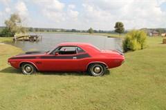A 1970 Dodge Challenger T/A